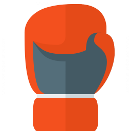 Boxing Glove Icon 256x256