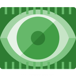 Eye Scan Icon 256x256