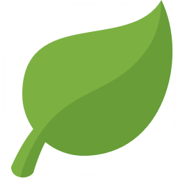 Leaf Icon 256x256