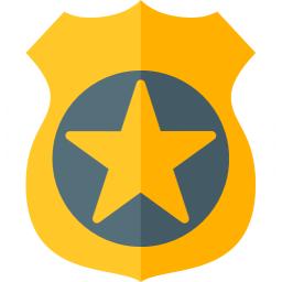 Security Badge Icon 256x256