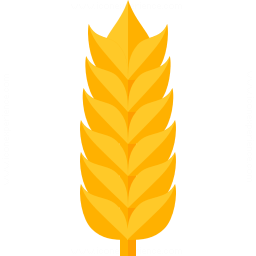 Wheat Icon 256x256