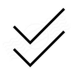 Checks Icon 256x256