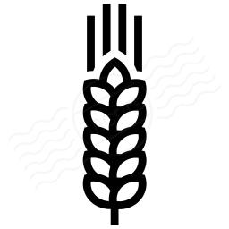 Wheat Icon 256x256