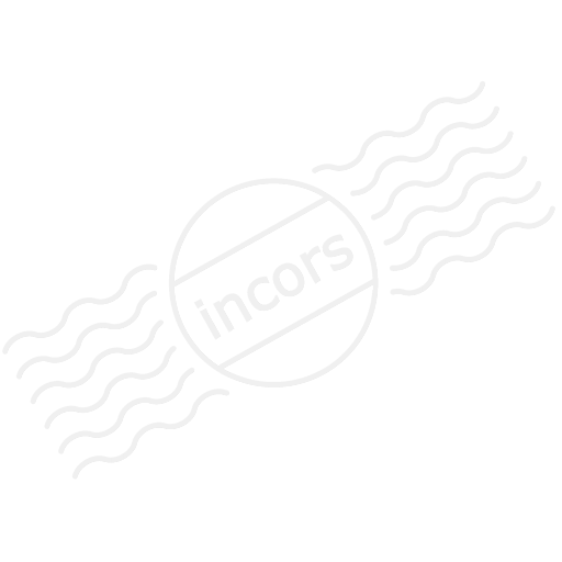 Battery 100 Icon