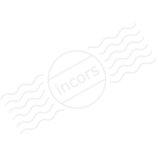 Form Plain Icon