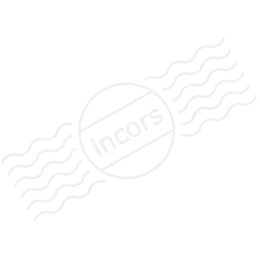 Memorystick Icon