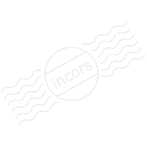 Moneybag Dollar Icon