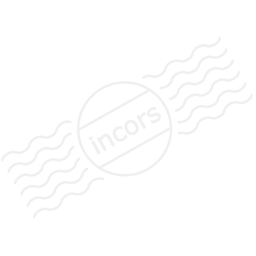 Pirates Ship Icon