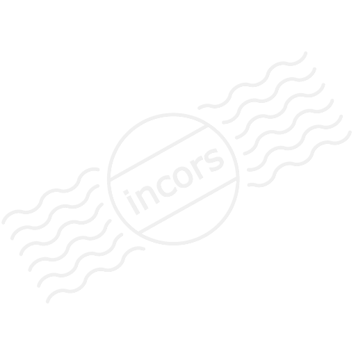Policeman Usa Icon