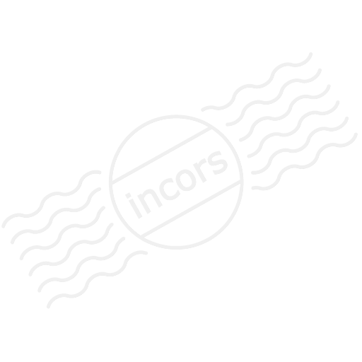 Server Id Card Icon