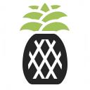 Pineapple Icon 128x128
