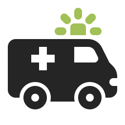 Ambulance Icon 256x256