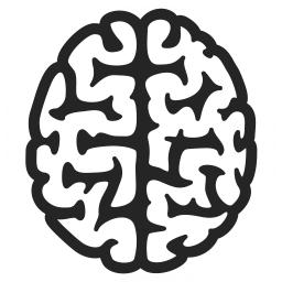 Brain Icon 256x256