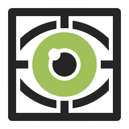 Eye Scan Icon 256x256