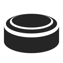 Hockey Puck Icon 256x256