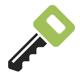 Key 2 Icon 256x256