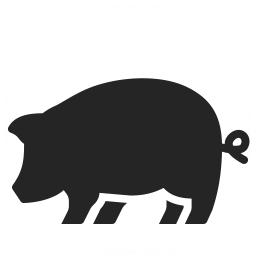 Pig Icon 256x256