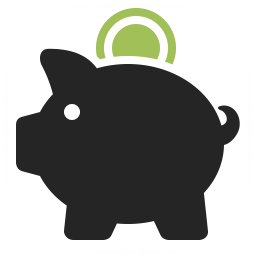 Piggy Bank Icon 256x256
