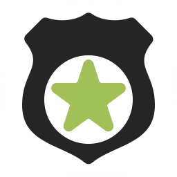Security Badge Icon 256x256