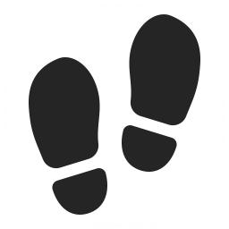 Step Icon 256x256