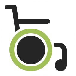Wheelchair Icon 256x256