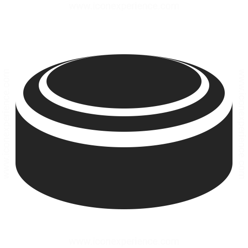 Hockey Puck Icon