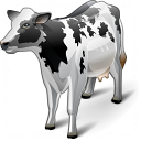 Cow Icon 128x128