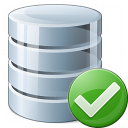 Data Ok Icon 128x128
