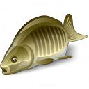 Fish Icon 128x128