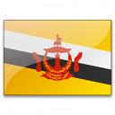 Flag Brunei Icon 128x128
