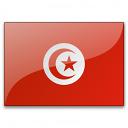Flag Tunisia Icon 128x128