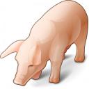Pig Icon 128x128