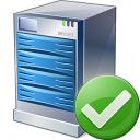 Server Ok Icon 128x128