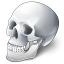 Skull Icon 128x128