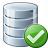 Data Ok Icon 48x48