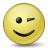 Emoticon Wink Icon 48x48