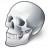 Skull Icon 48x48