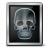 X-ray Icon 48x48