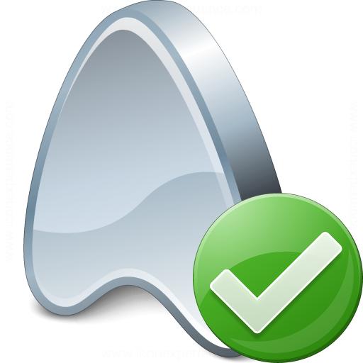 Application Ok Icon