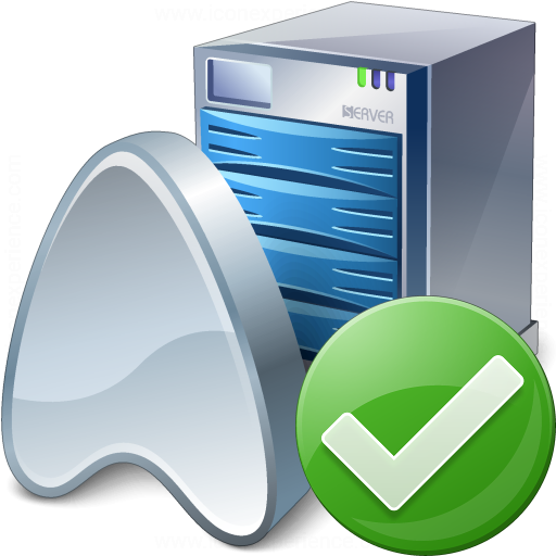 Application Server Ok Icon