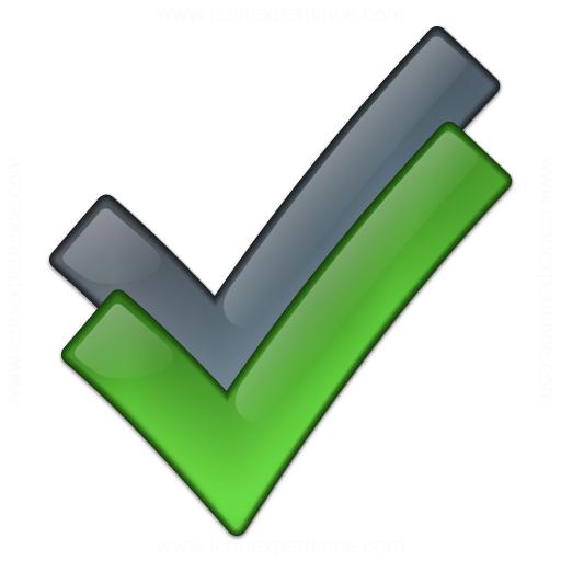 Checks Icon