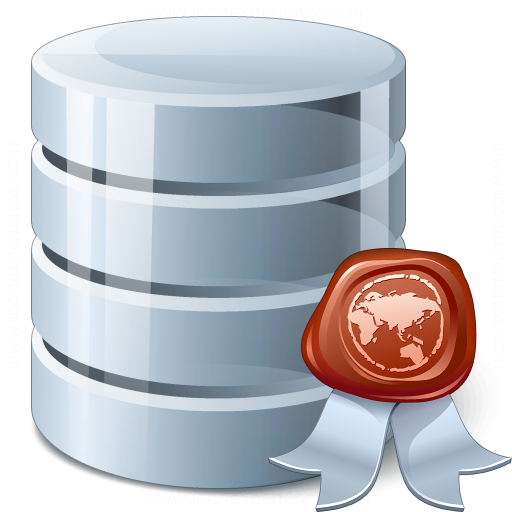 Data Certificate Icon