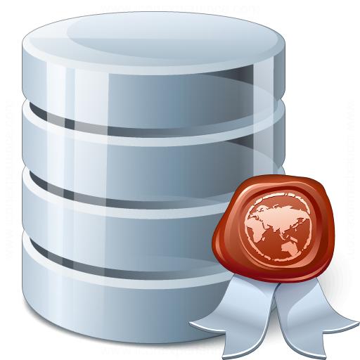 Data Certificate Icon