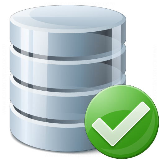Data Ok Icon
