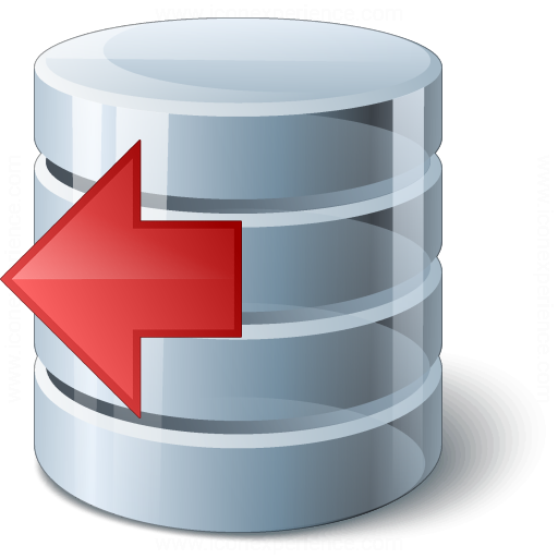 Data Previous Icon