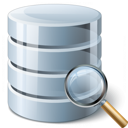 Data View Icon