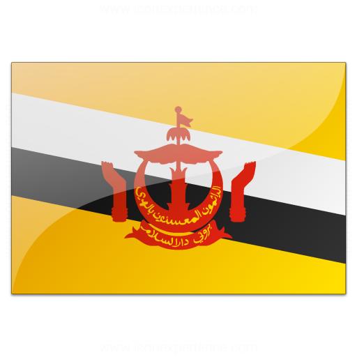 Flag Brunei Icon