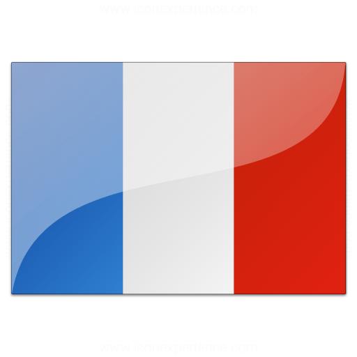 Flag France Icon