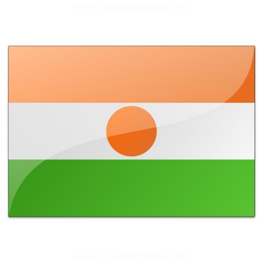 Flag Niger Icon