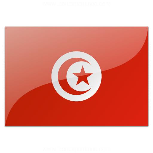 Flag Tunisia Icon